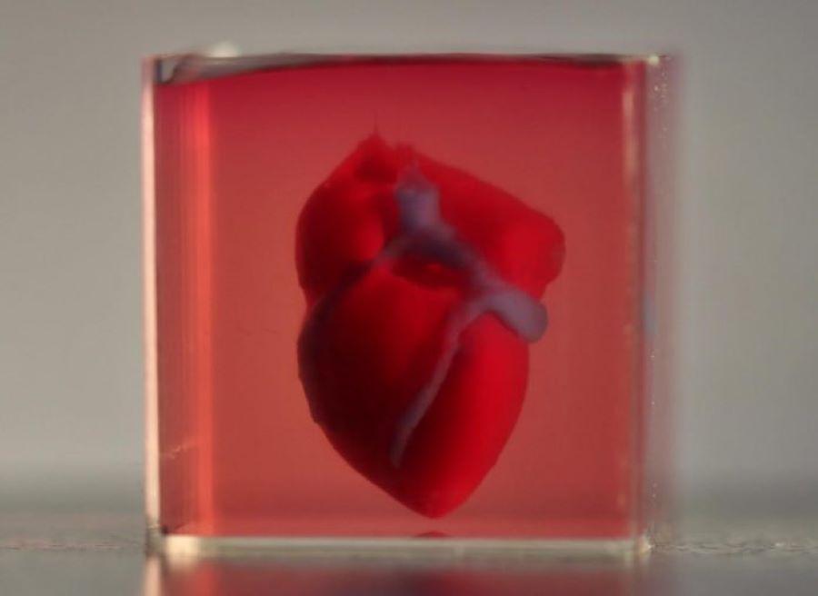 coração em 3d