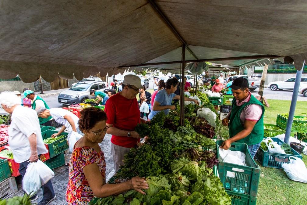 agroecologia saiba mais sobre este novo mercado